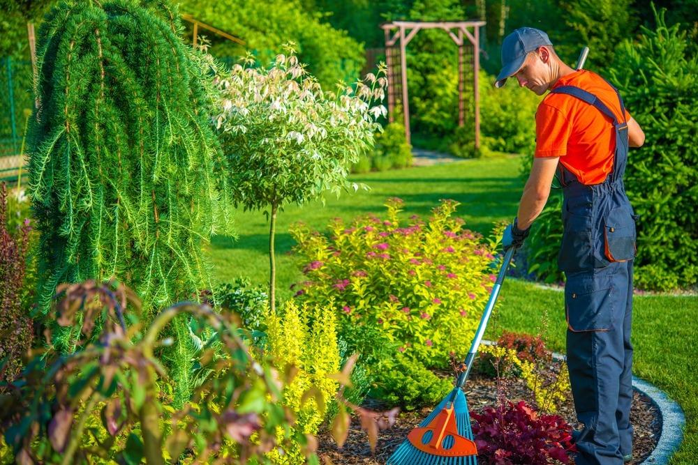 Jardinagem: dicas para prédios residenciais e comerciais