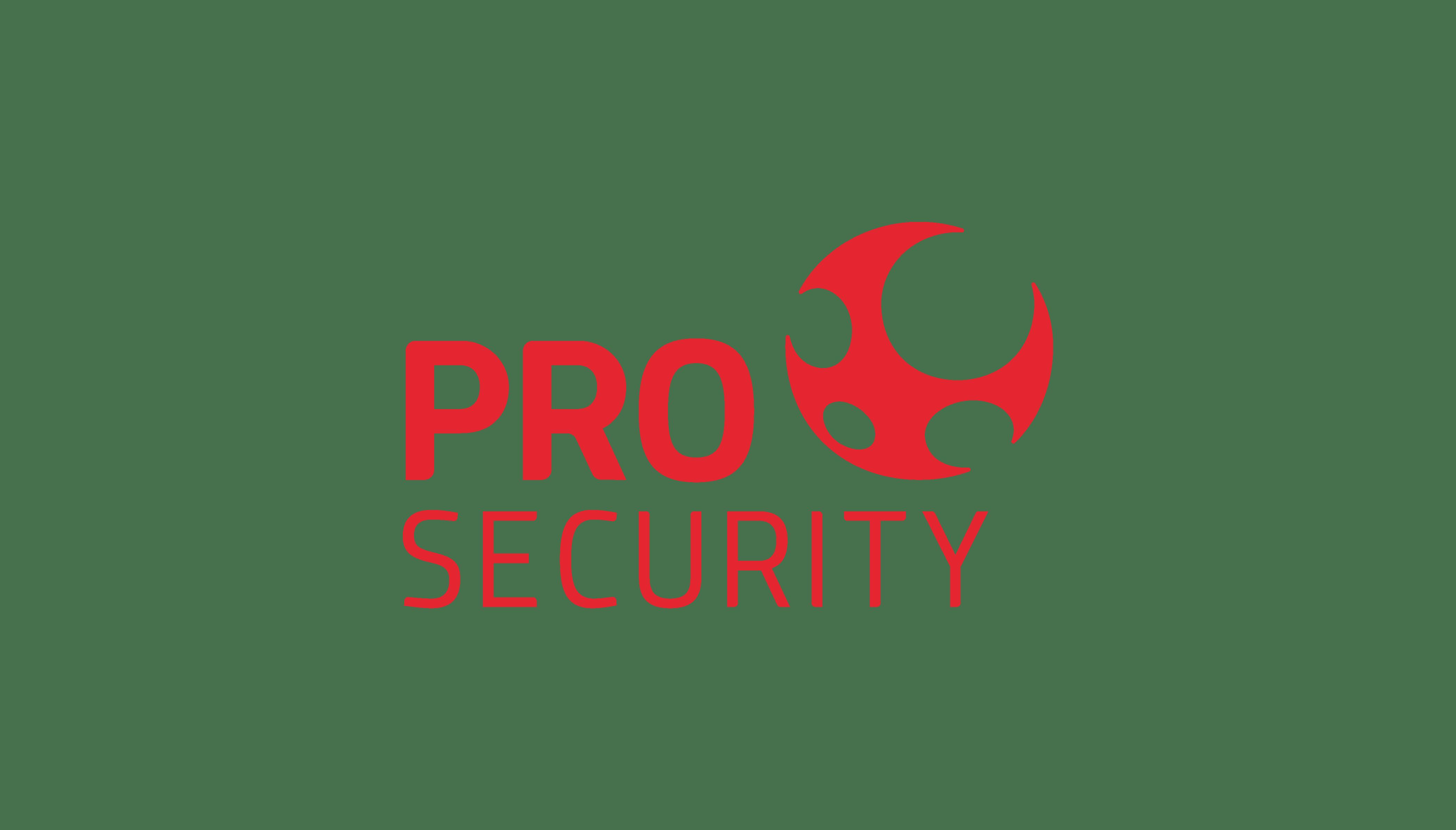 Pro Security: Um passo à frente por você
