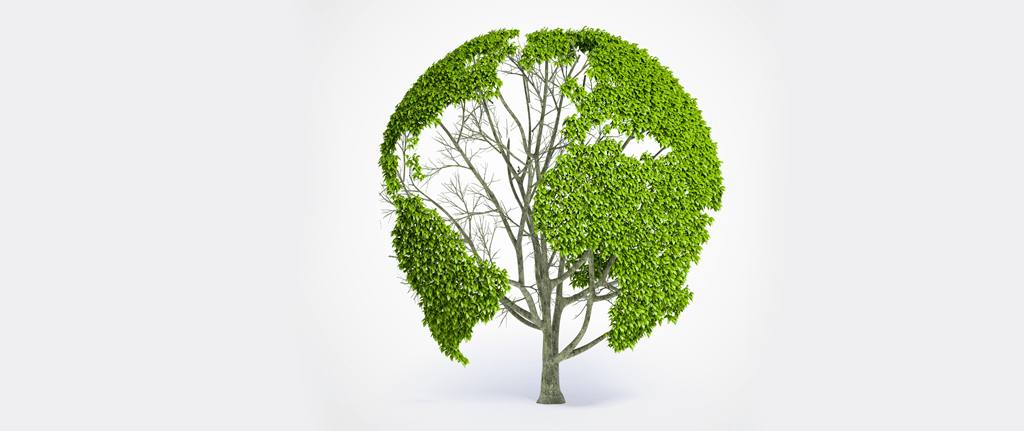 Pro Clean, Instituto Muda e Equilibre trazendo sustentabilidade até você