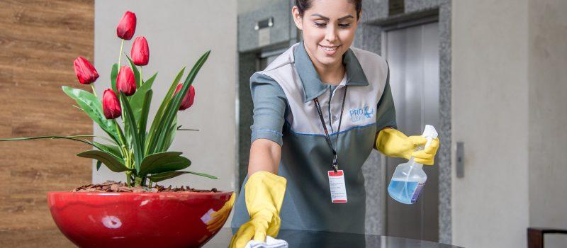 Limpeza e Conservação Pro Clean