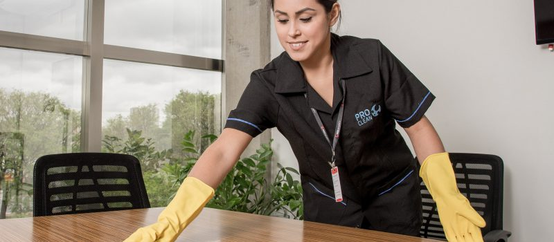 Limpeza Corporativa Pro Clean Pro Security